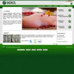 Indrol – hodowla, ubój i rozbiór indyka