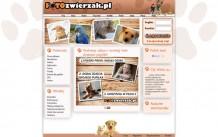 FOTOzwierzak – psy, koty, zwierzęta