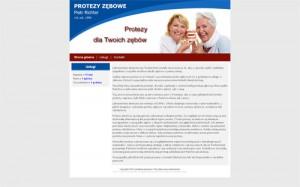 Naprawa i uszczelnianie protez Poznań