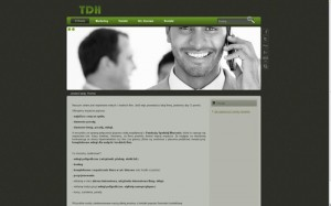 TDH usługi marketingowe – pozycjonowanie SEO