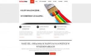 Tworzenie sklepów internetowych Piotrków Trybunalski