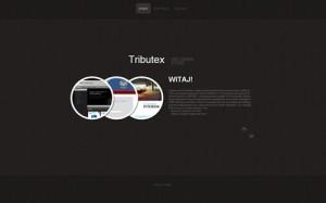 tworzenie stron internetowych i aplikacji www