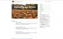 Przepisy kulinarne i porady kuchenne – wysmakowani.pl