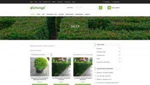 Rośliny na żywopłot – Sprzedaż internetowa